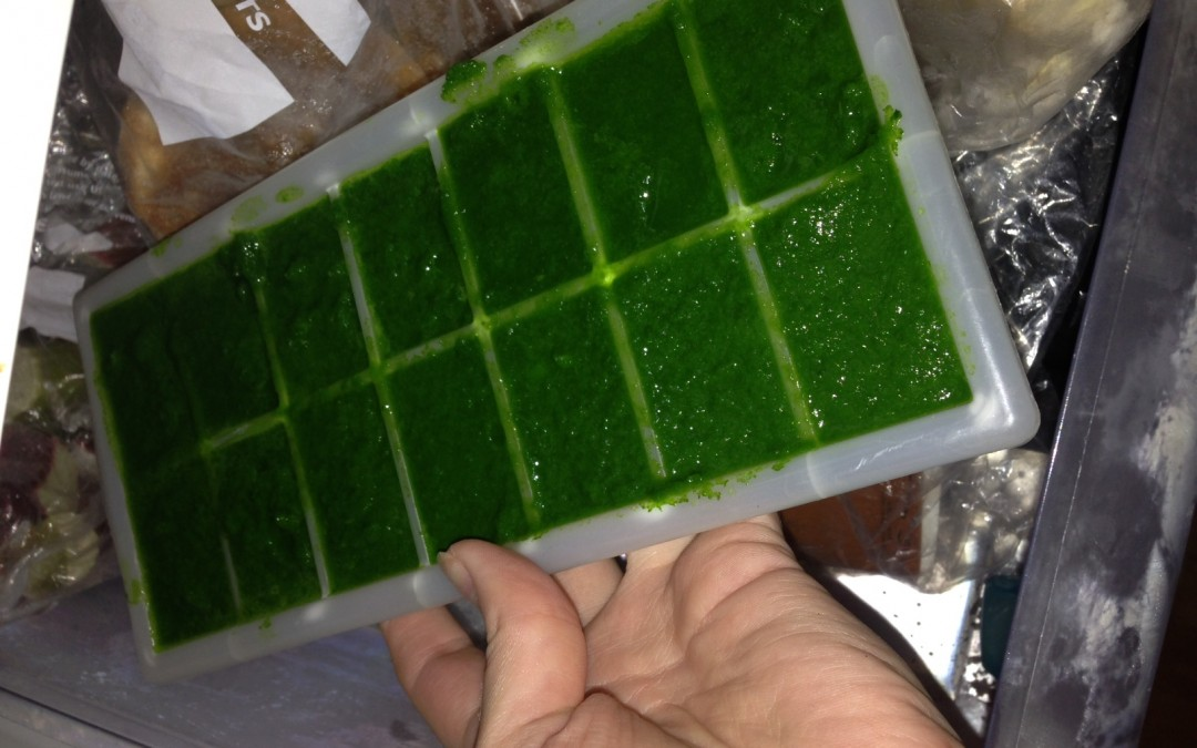 Why I juice & the mystery of Kale Kubes!